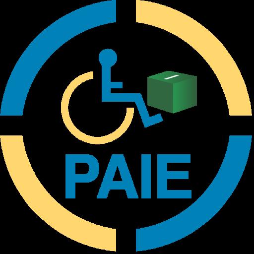 Pakistan Alliance for Inclusive Election